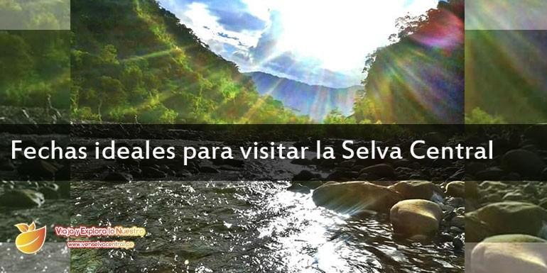 Como es el clima en la Selva Central (Chanchamayo, Satipo, Pichanaqui, Oxapampa, San ramón…)