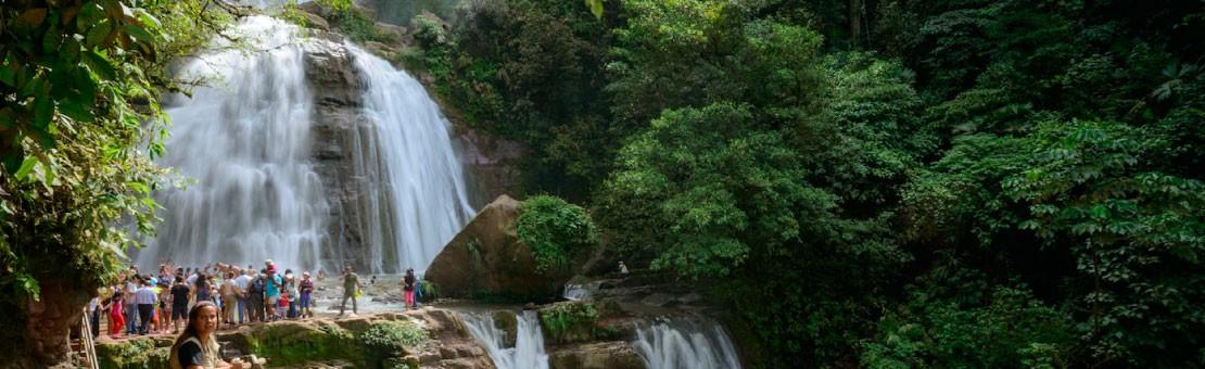 Viaja y disfruta de la Selva Central